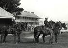 Military parade, c.1900