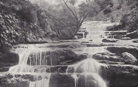 Sketch of the Cascade Falls, Leura. NRS16407-1-1[13]_p108